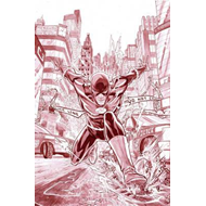 Flash by Francis Manapul Unwrapped HC (BOK)