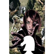 Checkmate by Greg Rucka Book 1 (BOK)