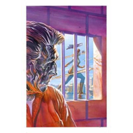 Astro City Vol. 14 Reflections (BOK)