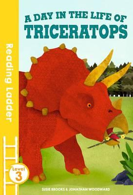 day in the life of Triceratops (BOK)