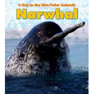 Narwhal (BOK)