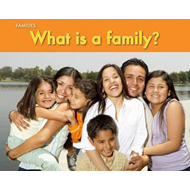 What Is a Family? (BOK)