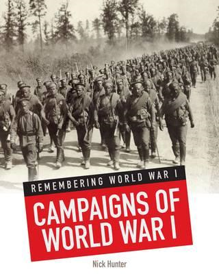 Campaigns of World War I (BOK)