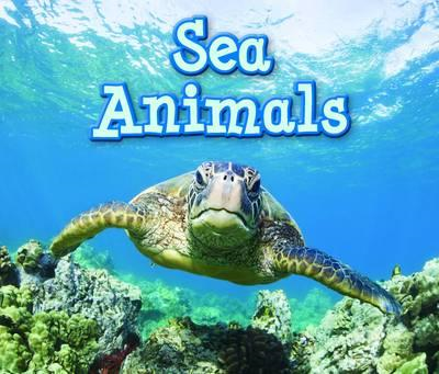 Sea Animals (BOK)