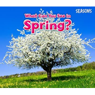 What Can You See In Spring? (BOK)