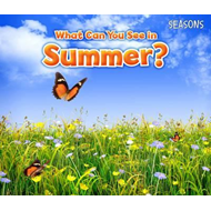 What Can You See In Summer? (BOK)