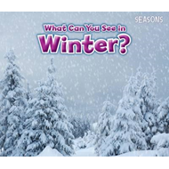 What Can You See In Winter? (BOK)