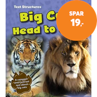Produktbilde for Big Cats Head to Head (BOK)