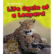 Life Cycle of a Leopard (BOK)