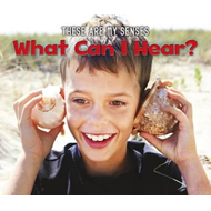 What Can I Hear? (BOK)