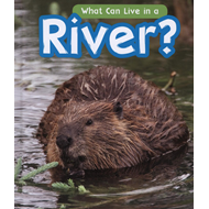 What Can Live in a River? (BOK)