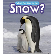 What Can Live in the Snow? (BOK)