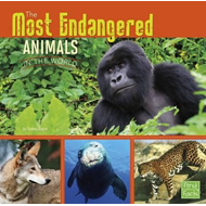 Most Endangered Animals in the World (BOK)