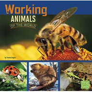 Working Animals of the World (BOK)