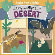 Day and Night in the Sonoran Desert (BOK)