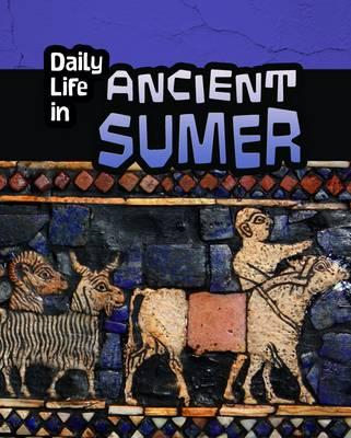 Daily Life in Ancient Sumer (BOK)