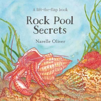 Rock Pool Secrets (BOK)
