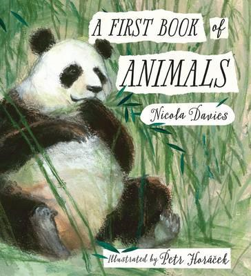 First Book of Animals (BOK)