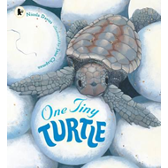One Tiny Turtle (BOK)
