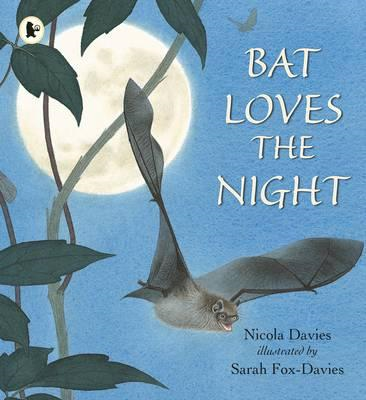 Bat Loves the Night (BOK)