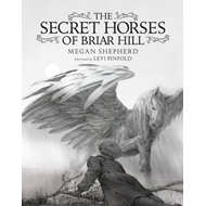 Secret Horses of Briar Hill (BOK)