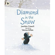 Diamond in the Snow (BOK)