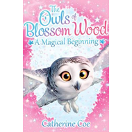 Owls of Blossom Wood: A Magical Beginning (BOK)