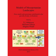 Models of Mesopotamian Landscapes. How Small-scale Processes