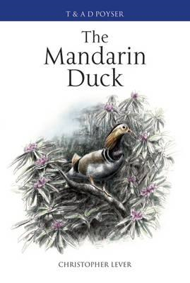 The Mandarin Duck (BOK)