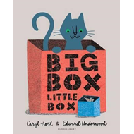Produktbilde for Big Box Little Box (BOK)