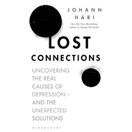 Lost Connections (BOK)