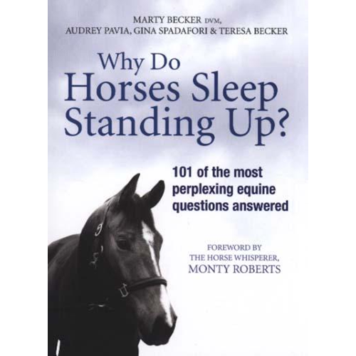 Why Do Horses Sleep Standing Up? (BOK)