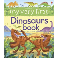 My Very First Dinosaurs Book (BOK)