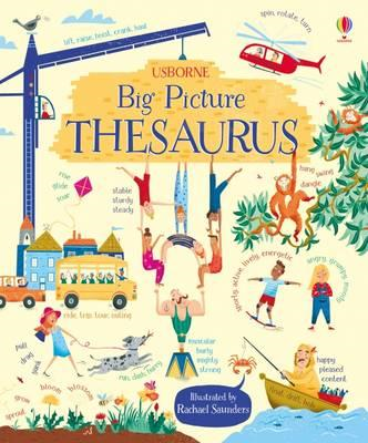 Big Picture Thesaurus (BOK)