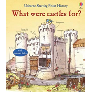 What Were Castles For? (BOK)