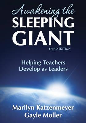 Awakening the Sleeping Giant (BOK)