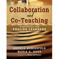 Collaboration and Co-Teaching (BOK)