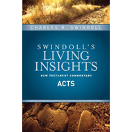 Insights on Acts (BOK)