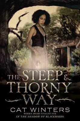 Steep and Thorny Way (BOK)