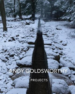 Andy Goldsworthy: Projects (BOK)