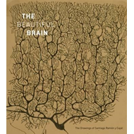 Beautiful Brain: The Drawings of Ramon y Cajal (BOK)