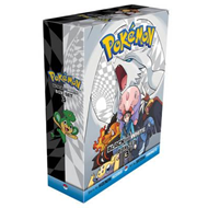 Pokemon Black and White Box (BOK)