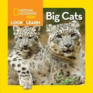Look and Learn: Big Cats (BOK)