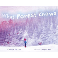 What Forest Knows (BOK)