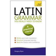 Latin Grammar You Really Need to Know: Teach Yourself (BOK)