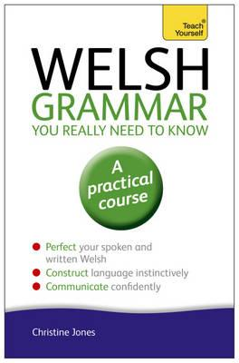 Welsh Grammar You Really Need to Know: Teach Yourself (BOK)
