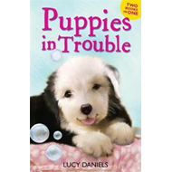 Animal Ark: Puppies in Trouble (BOK)
