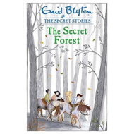 Secret Stories: The Secret Forest (BOK)