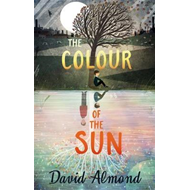The Colour of the Sun (BOK)