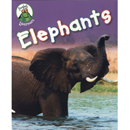 Froglets: Learners: Elephants (BOK)